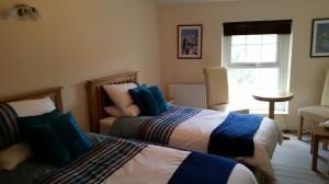 Bridge Inn - Twin Room